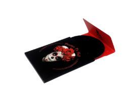 CD in Discbox Slider